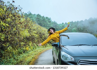 Asian women are on vacation. Drive happily traveling to the Mexican sunflower flower garden in Thailand.