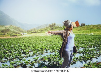 Asian women relax in the holiday. Write a note in the notebook. In the Strawberry Park on the Moutain. In Thailand