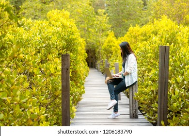 Asian women working and drinking coffee after education nature and forest input the laptop under big tree. The mangrove forest nurture environmental and reduce global warming earth. Ecology Concept