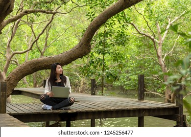 Asian women working  drinking coffee after education nature and forest outdoors the laptop under big tree.  The mangrove forest nurture environmental and reduce global warming earth.  Ecology Concept