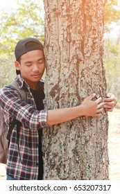 Asian young boy hug big tree, selective soft focus, concept nature and people.