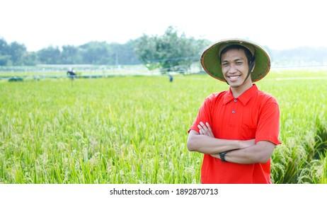 asian young man, farmer man, smile at rice field