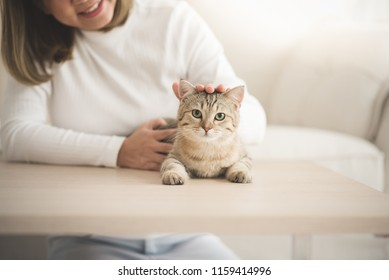 Asian Young woman playing with cat in living room