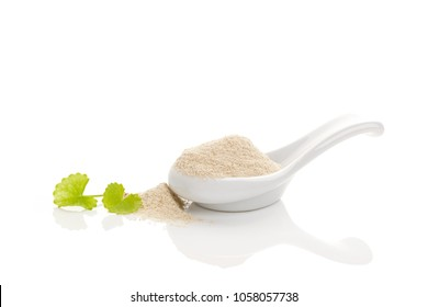 Asiatic Pennywort Gotu kola powder in white spoon, isolated on white background. Alternative medicine, natural remedy, medicinal herb.