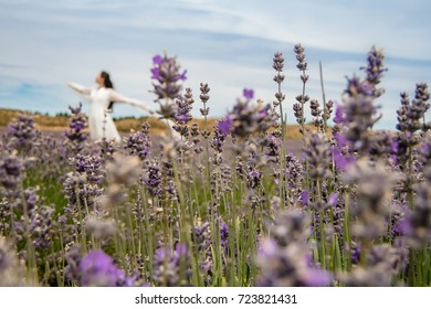 Asiatic women dancing in Lavender field