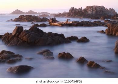 Asilomar Marine Reserve, Pacific Grove, California, USA