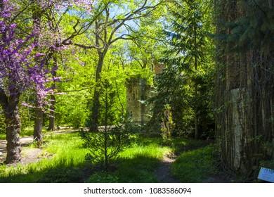 Askania-Nova, Kherson region, Ukraine - May 01, 2018: Water tower in biosphere reserve Askania-Nova