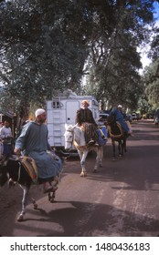 ASNI, MOROCCO - NOV 1, 2000 - Donkey convoy on the way  to the  weekly market in Asni, Morocco