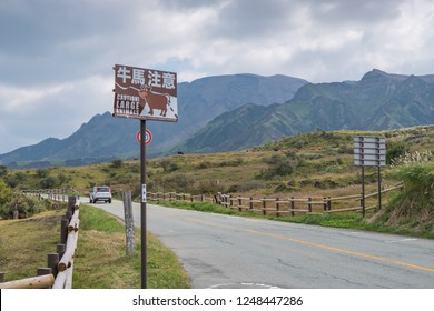 Aso,Kumamoto,Kyushu,Japan - October 17, 2018 :Green grass field with Aso mountain background and roadway
