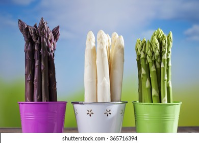Asparagus, green, white, purple, bunches