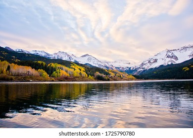 Aspen trees in the San Juan Mountains of Colorado with snow covered mountains in autumn at sunset