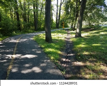 asphalt path or trail with shortcut path through the dirt and grass