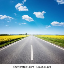 Asphalt road among the summer field under blue cloudy sky. Beautiful countryside landscape