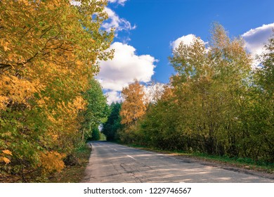 Asphalt road among yellow trees in autumn sunny day, Russia.