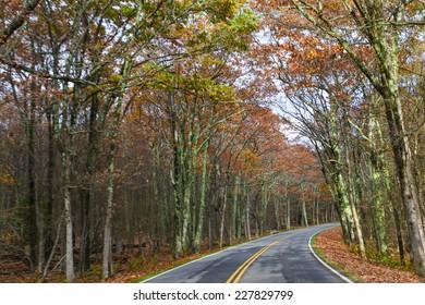 Asphalt road with autumn foliage - Shenandoah National Park, Virginia United States