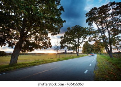 asphalt road with beautiful trees on the sides in autumn. Car moving on highway at sunset