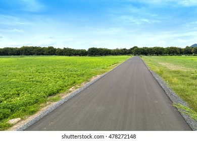 asphalt road between field with blue sky, country side view at Lopburi, Thailand