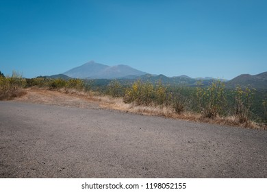 asphalt road closeup with landcape and mountain background and blue sky copy space