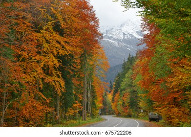 Asphalt road in colorful autumn forest against snowy mountain.
