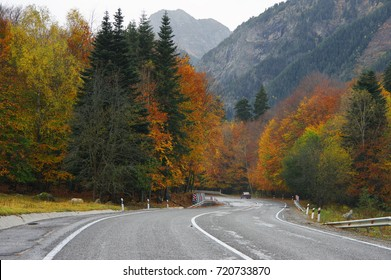 Asphalt road in colorful autumn forest against snowy mountains.