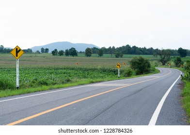 asphalt road in countryside with corn field,curve road