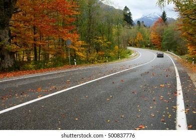 Asphalt road with fallen leaves and car in colorful autumn forest. Focus on foreground.