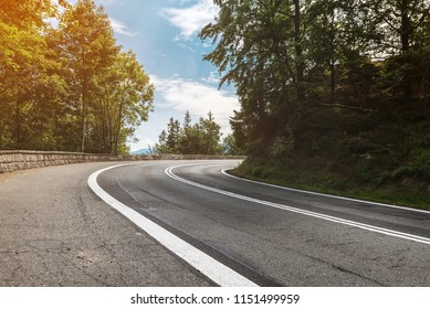 Asphalt road in forest on a sunny day