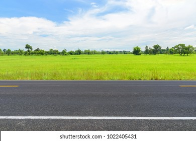 asphalt road and green rice field