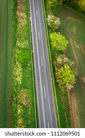 Asphalt road with green trees on the roadside seen from above