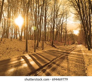 Asphalt road in the snowy winter woods, the sun shines at sunset