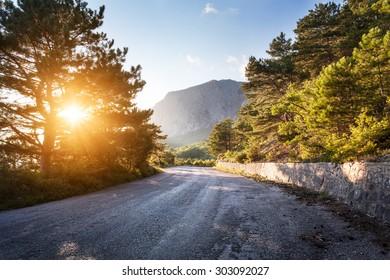 Asphalt road in summer forest at sunset. Crimean mountains