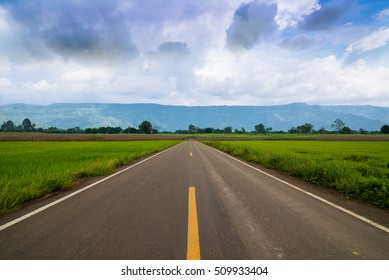 Asphalt road through the cornfield and clouds on blue sky.