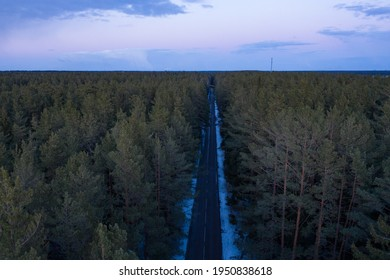 Asphalt road through the forest. Summer coniferous forest travel landscape. Long empty straight road and blue cloudy sky above.