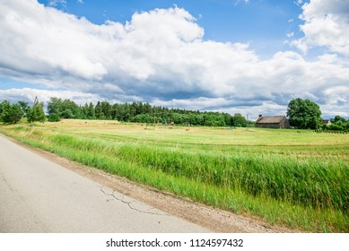 An asphalt road through the green country fields with a forest in the background on a sunny summer day, Latvia