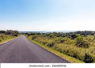 Asphalt road through natural green wetland vegetation  and blue skyline landscape at iSimangaliso Wetland Park in Zululand, KwaZulu Natal, South Africa