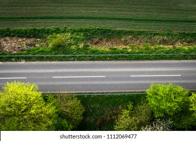 Asphalt road with white stripes seen from above with green trees
