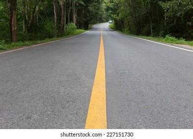 asphalt roadway through green forest