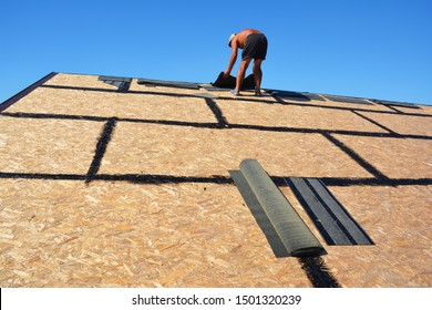 Asphalt Shingles Roofing Construction. Roofer roofing construction with oriented strand board (OSB) and bitumen waterproofing laying asphalt shingles, roof repair