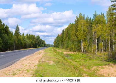 asphalted road among autumn forest