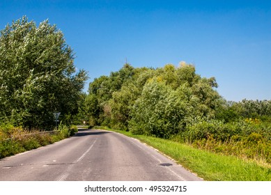 Asphalth third grade curved Slovak countryside road near forest, summer