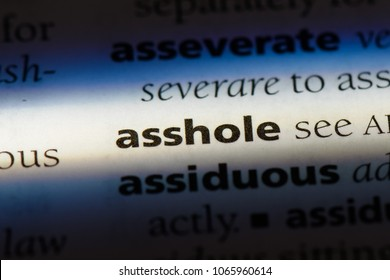 asshole word in a dictionary. asshole concept.