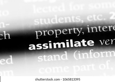 assimilate word in a dictionary. assimilate concept.