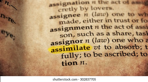 Assimilate word in old textured dictionary