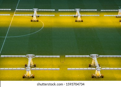 assimilation lighting in soccer stadium, Lighting assimilation off grass,