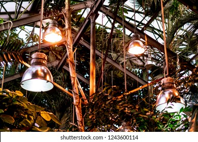 assimilation lights in the greenhouse with growing tropical exotic south plants and trees