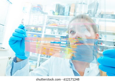 The assistant in the lab analyzes the sequence of DNA