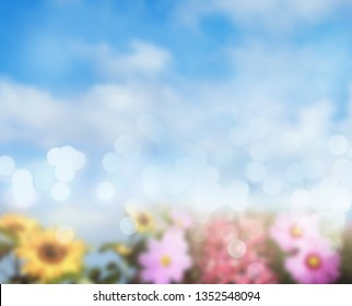 Assorted blurry flowers and blue sky. Spring time