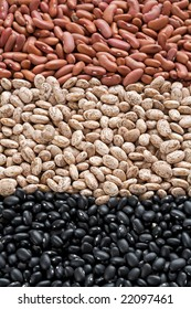 Assorted dried common beans