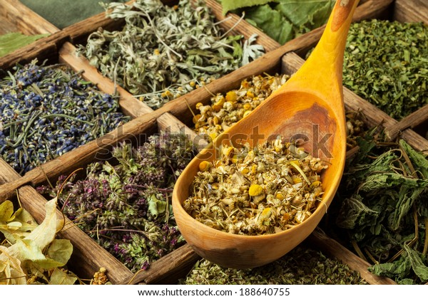 Assorted dried medical herbs tea.