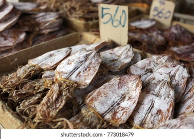 Assorted dried Squid for Sale on a Market in Thailand
